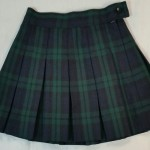 STM_Skirt